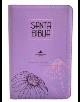 Biblia Reina Valera 1960 - Color Lila - Ayudas Digitales